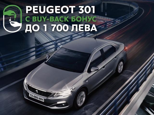 Peugeot 301 byu back