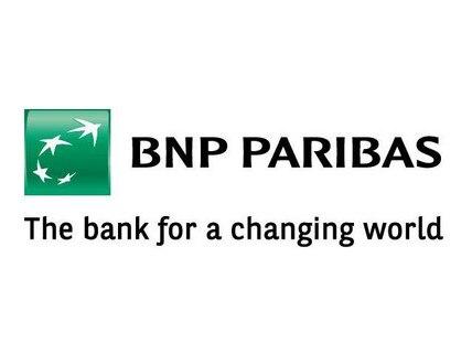 Лого БНП